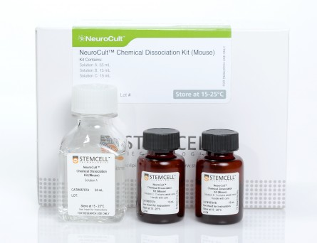 NeuroCult™ Chemical Dissociation Kit (Mouse)