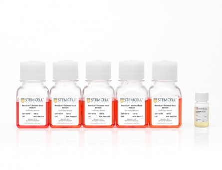 NeuroCult™ SM1 Neuronal Culture Kit