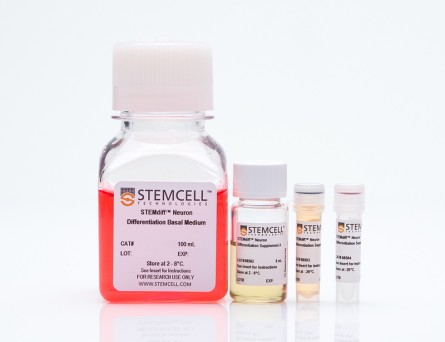 STEMdiff™ Neuron Differentiation Kit