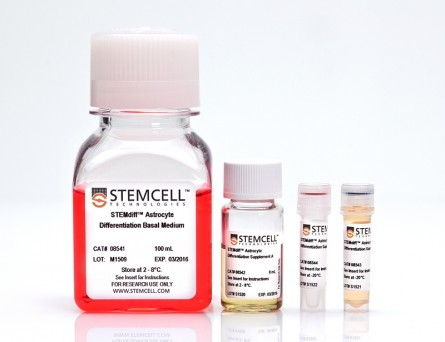 STEMdiff™ Astrocyte Differentiation Kit