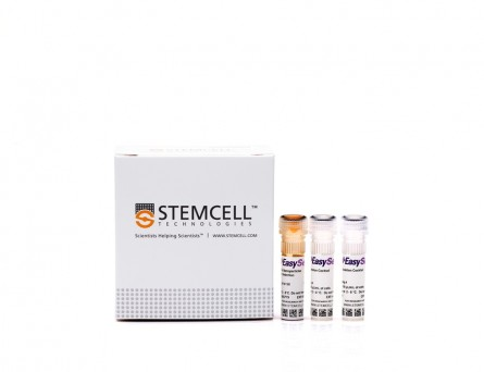 EasySep™ Human ES/iPS Cell TRA-1-60 Positive Selection Kit