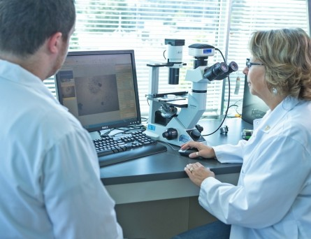 Contract Assay Services