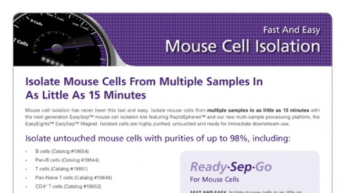 Easysep Mouse T Cell Isolation Kit