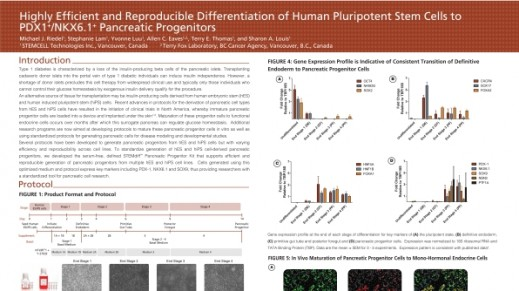 Highly Efficient and Reproducible Differentiation of hPSCs to PDX1+ NKX6.1+ Pancreatic Progenitors