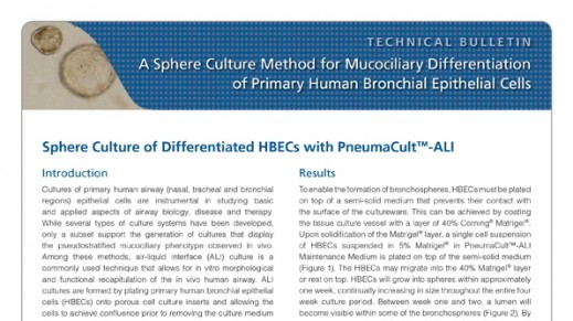 A Sphere Culture Method for Mucociliary Differentiation of Primary Human Bronchial Epithelial Cells