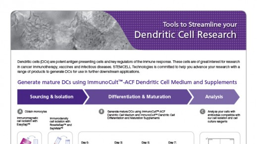 Tools to Streamline your Dendritic Cell Research