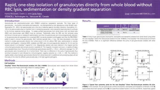 Rapid, one-step isolation of granulocytes directly from whole blood without RBC lysis, sedimentation or density spearation