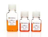 STEMdiff™ Trilineage Differentiation Kit