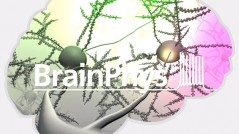 BrainPhys™: A New Way to Culture Neurons