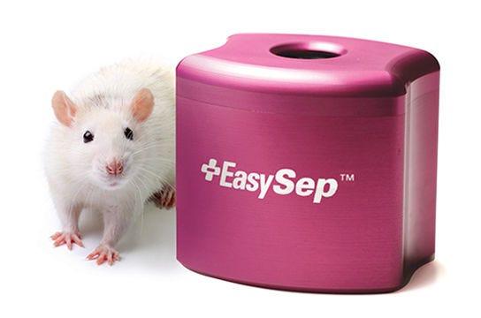 EasySep™ Rat Cell Isolation Kits
