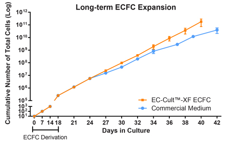 Greater Expansion of Human ECFCs is Obtained When Using the EC-Cult™-XF ECFC Culture Kit