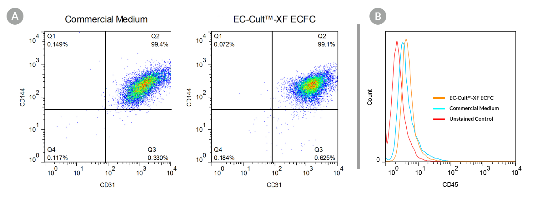 Human ECFCs Culture-expanded in EC-Cult™-XF ECFC Medium are Homogeneous and Maintain High Expression of Endothelial Cell Surface Markers