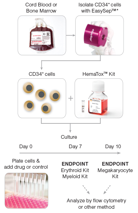 General HemaTox™ Kit Procedure