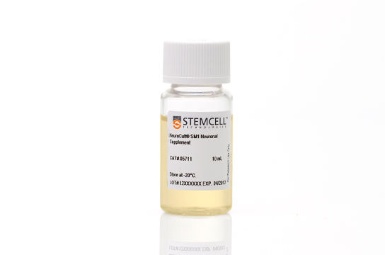 NeuroCult™ SM1 Neuronal Supplement