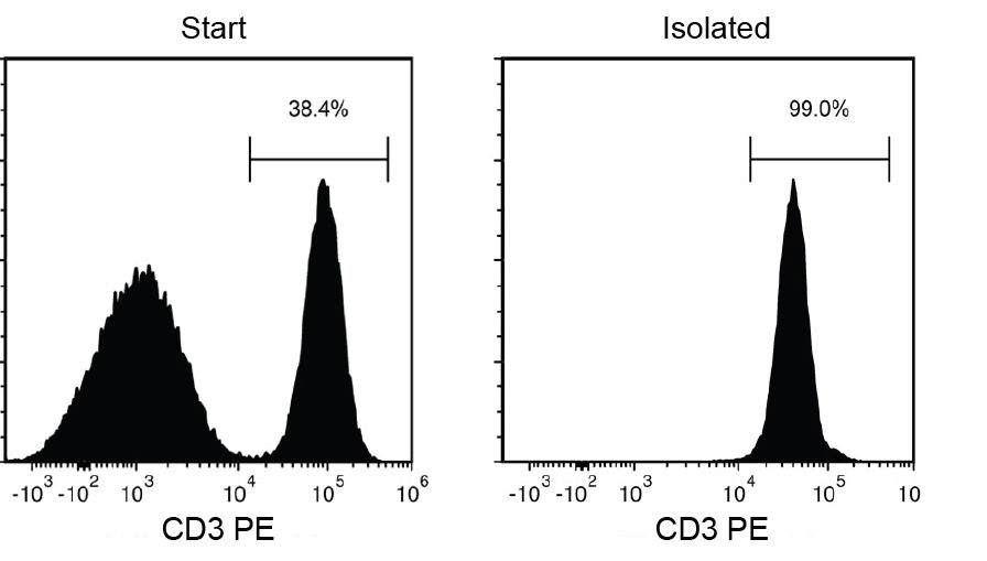 Typical EasySep™ Release Human CD3 Positive Selection