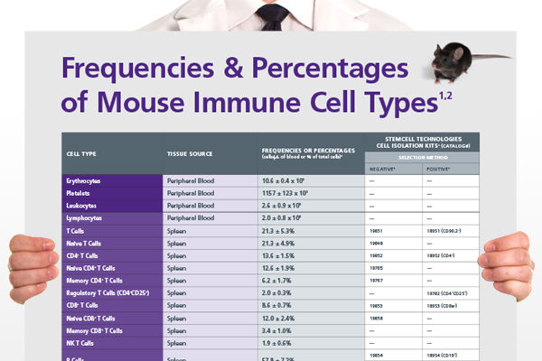 Frequencies of Mouse Immune Cells