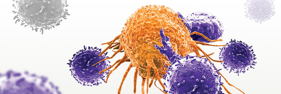 genetically modified T cells