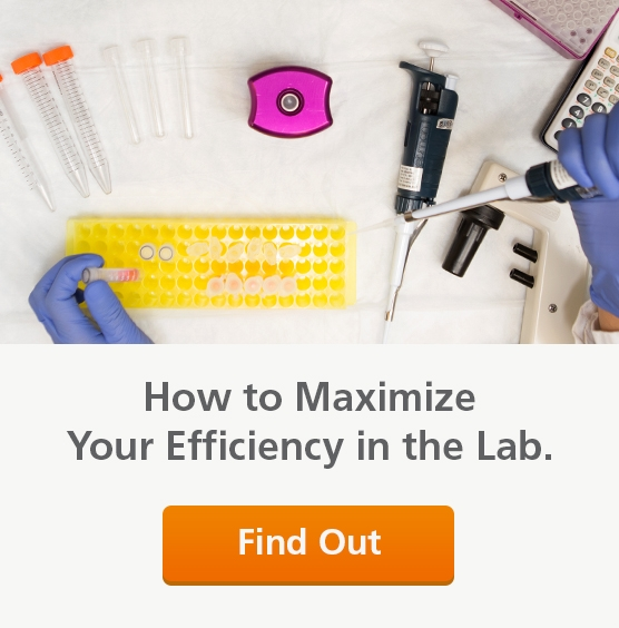 Maximizing efficiency in an immunology research lab.