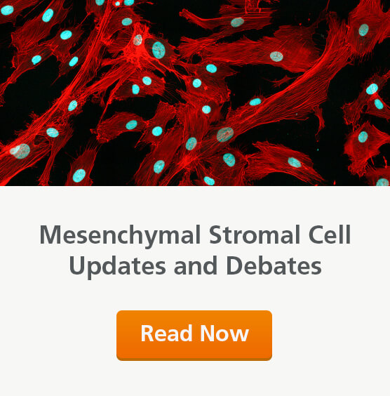 Mesenchymal stromal cells debates and updates