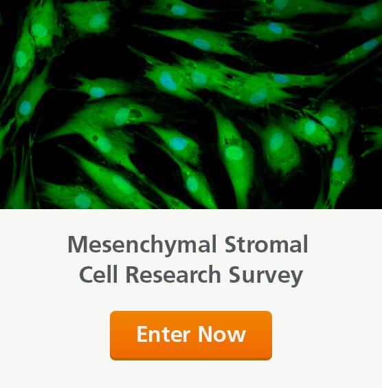 Take our MSC survey to win a travel award!