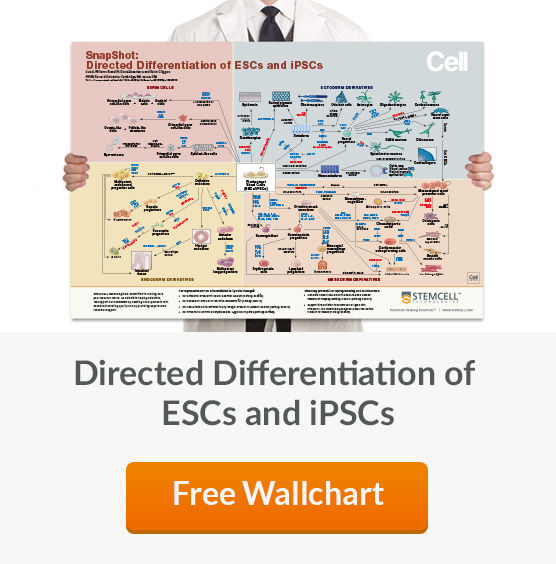 Free Wallchart