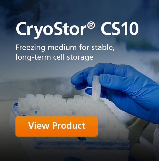 Try CryoStor® CS10, a serum-free freezing medium, for stable and long-term cell storage.