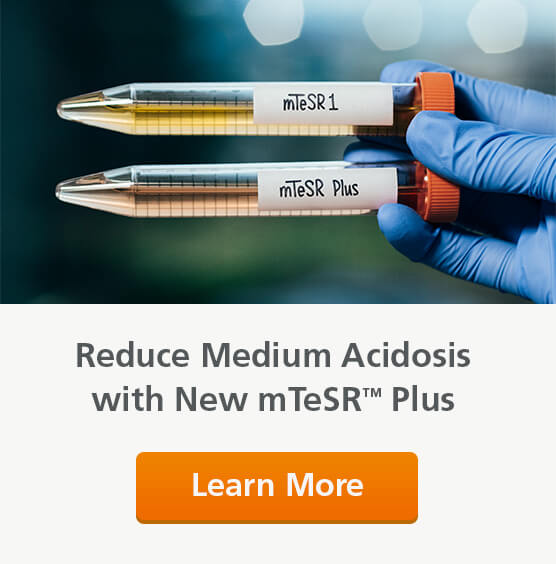 Reduce acidosis with mTeSR™ Plus hPSC maintenance medium