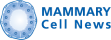 Mammary Cell News