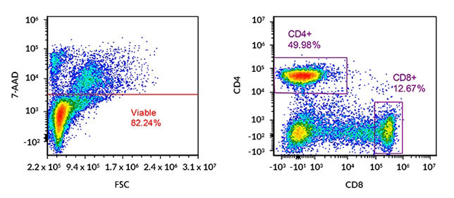 Immunophenotyping by flow cytometric marker analysis: multicolour FACS dot plots of human peripheral blood mononuclear cells