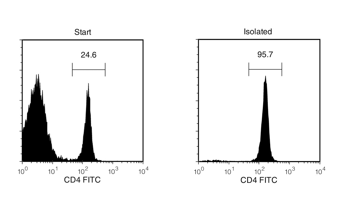 Mouse CD4+ T Cell Isolation Profile