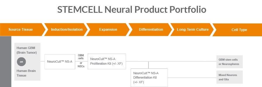 Explore STEMCELL Technologies' custom solutions.