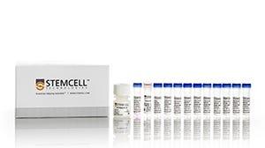 hPSC Genetic Analysis Kit for detecting karyotypic abnormalities in hPSCs