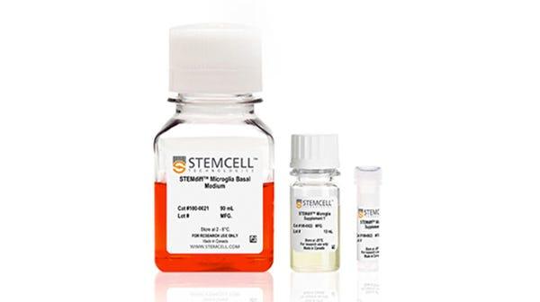 STEMdiff™ Microglia