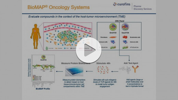 Webinar: Evaluating the Immuno-Oncology Potential of Compounds Using Human In Vitro TME Models